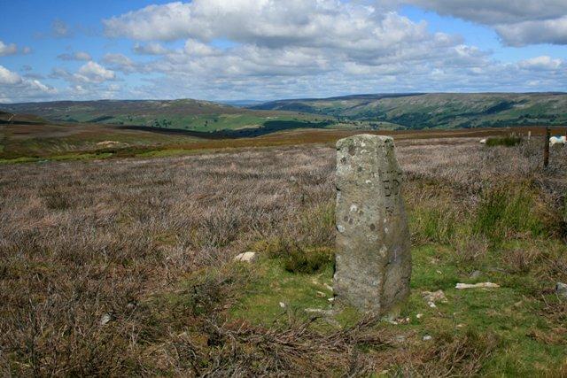 Boundary Stone. Grinton Moor