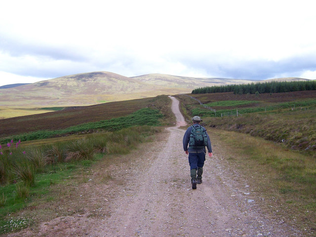 The track leading up Strath Rory heads towards the forest.