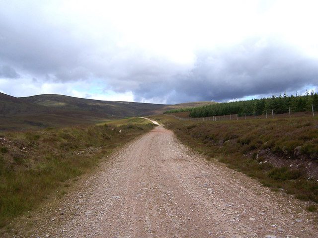 The track leading up Strath Rory follows the forest edge.