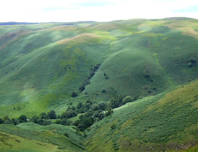 Across Cwm Doethie to Esgair Gwair, Ceredigion
