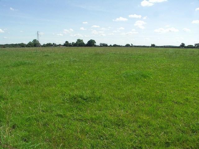Fields off Church Lane