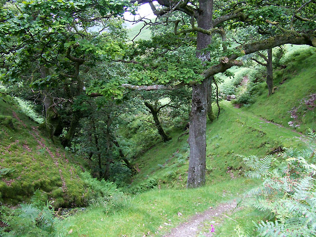 Gorge at Nant Lluest Fach, Cwm Doethie, Ceredigion