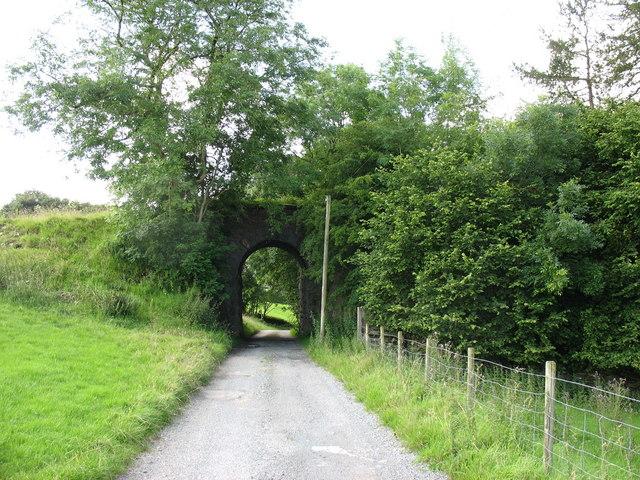 Farm road linking Tyddyn Felin with the A470