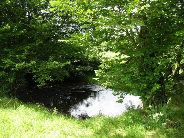 The placid Nant Islyn