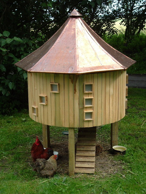 Upmarket accommodation for Chickens