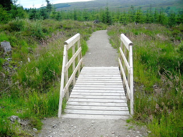 Footbridge over Ditch in Leanachan Forest
