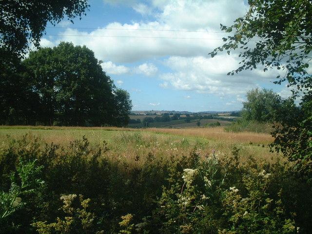 Farmland towards Baveney Wood