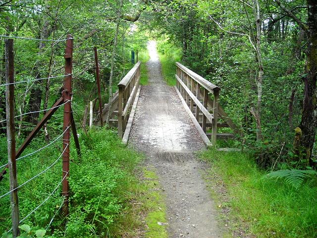 Footbridge in Leanachan Forest