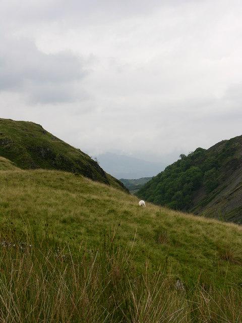 Valley next to Craig y Benglog