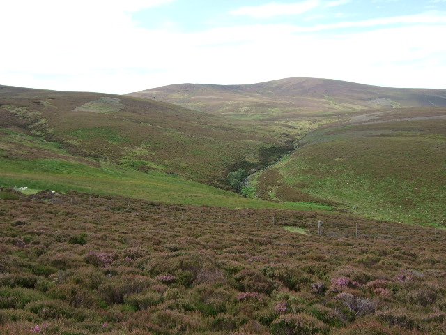 Stag Burn from Cairn O'Mount road