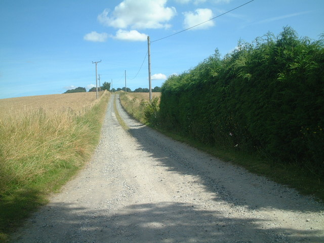 Farm road to Knowle Hill
