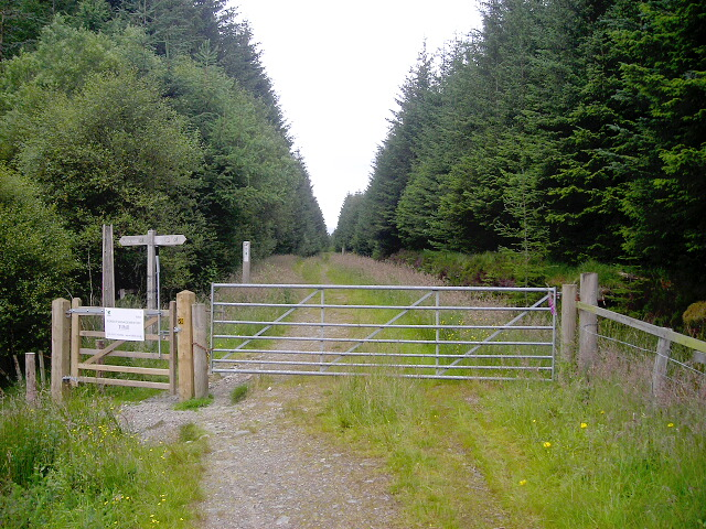 Gate on Witches Trail Cycle Trail in Leanachan Forest