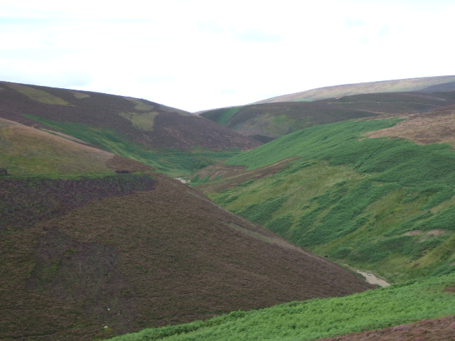View up Back Burn of Arnbarrow