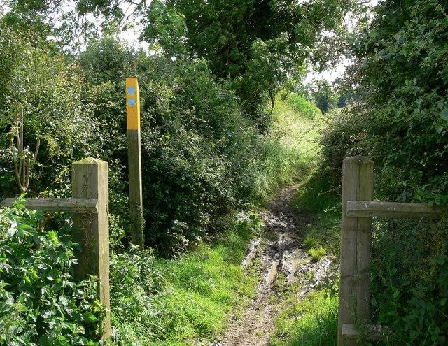 Public Bridleway to Sapcote