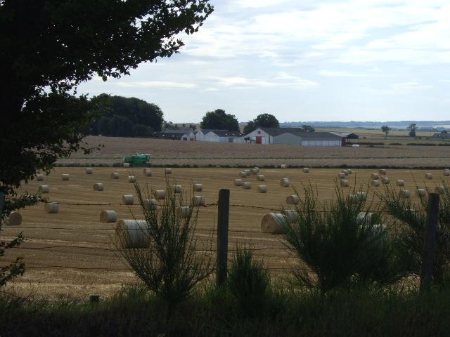 Balmain Farm