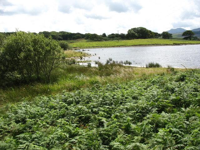 Bracken fringed lake inlet