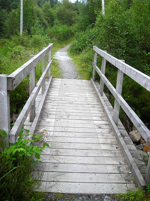 Footbridge in Leanachan Forest