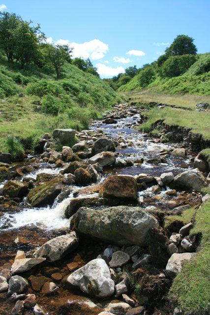 Cogden Gill, View Upstream