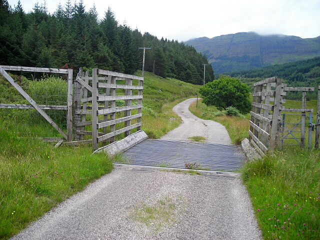 Cattle Grid on Road to Loch Teacus