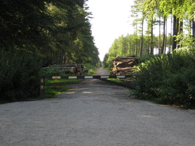Swynnerton Old Park