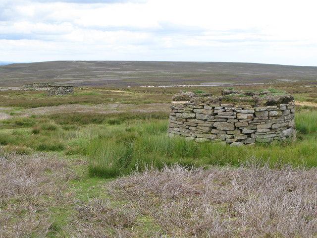 Grouse butts on Newbiggin Fell (2)