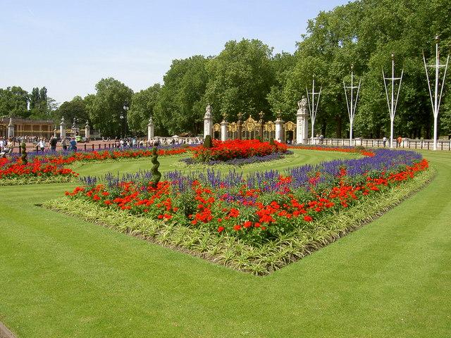 Flower bed near Buckingham palace.