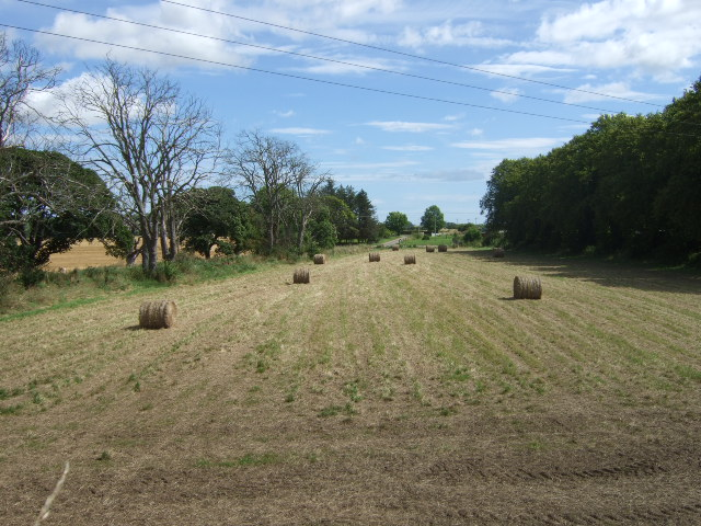 Bales in field by Bridge of Dun railway station.