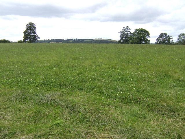 Pasture land west of Nortons Farm