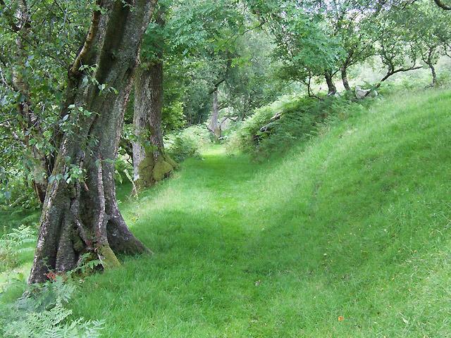 Bridleway near Dinas, Cwm Doethie, Ceredigion