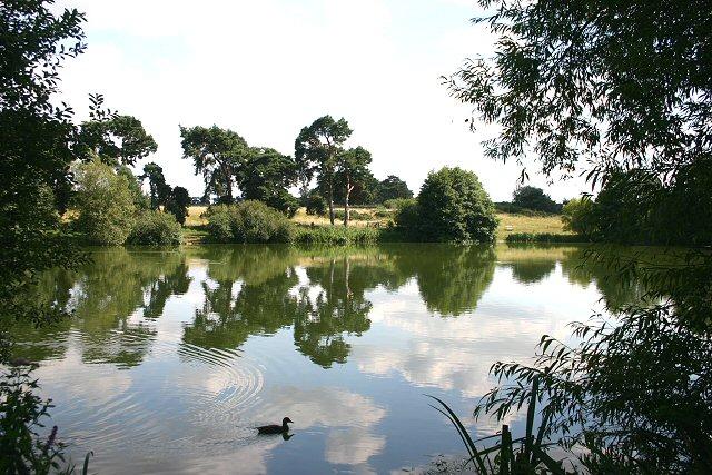 Nunnery Lakes, Thetford