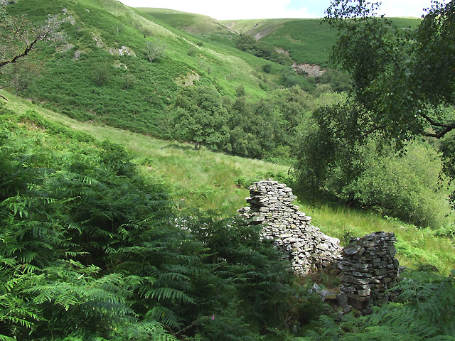 Ruins and Hillside at Dinas, Cwm Doethie, Ceredigion