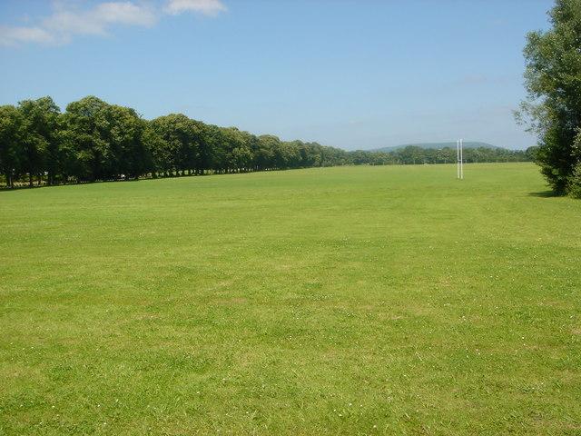 Pontcanna Fields