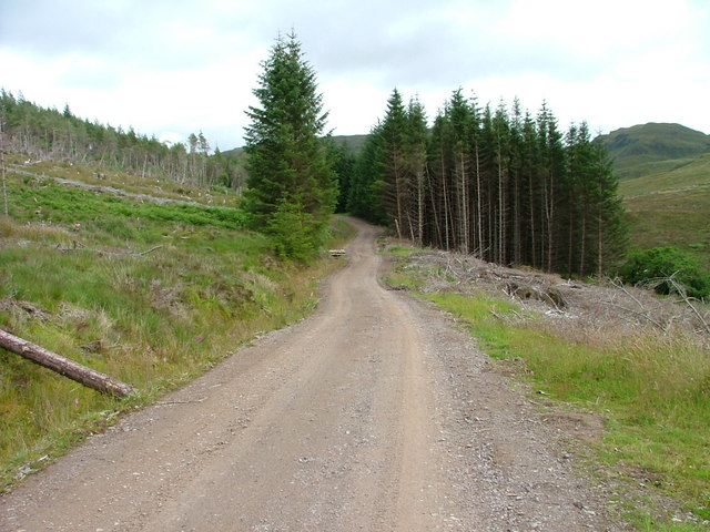 Track in Meall Ailein Forest.