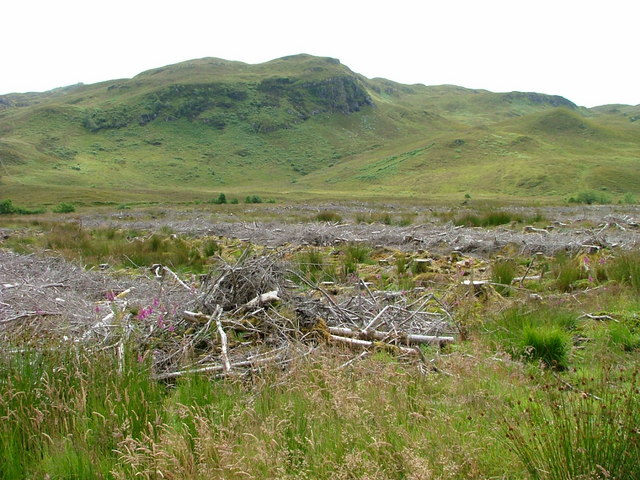 Clearfell in Meall Ailein Forest.