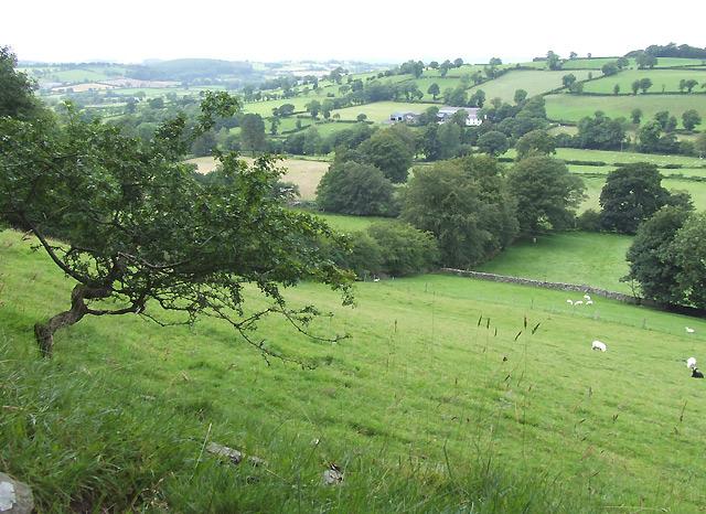 Farm Land near Llanddewi-Brefi, Ceredigion