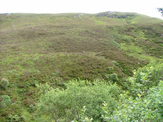 Northwestern Slopes of Creag Mhór