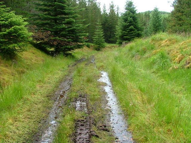 Wet Track