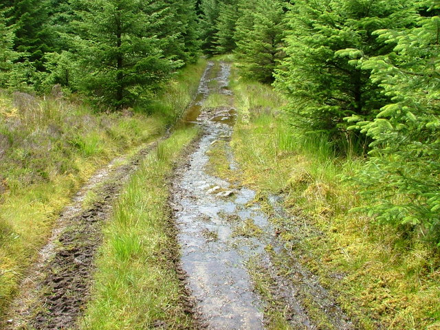 Very Wet Track