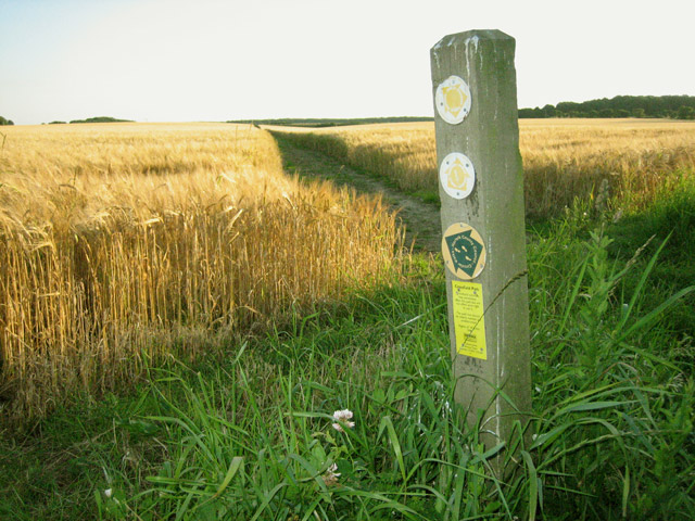 Start of a crossfield path towards south west