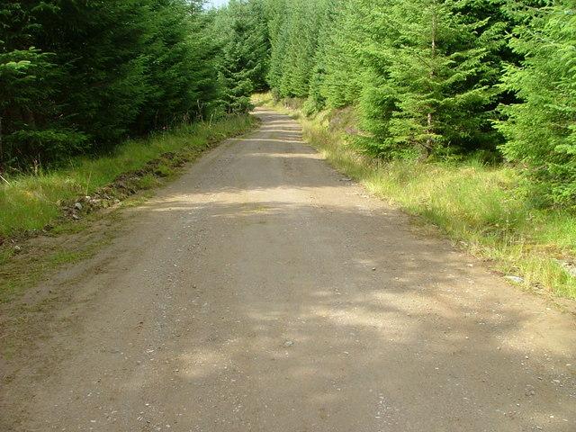 Forest Road through The Bealach a' Choire.