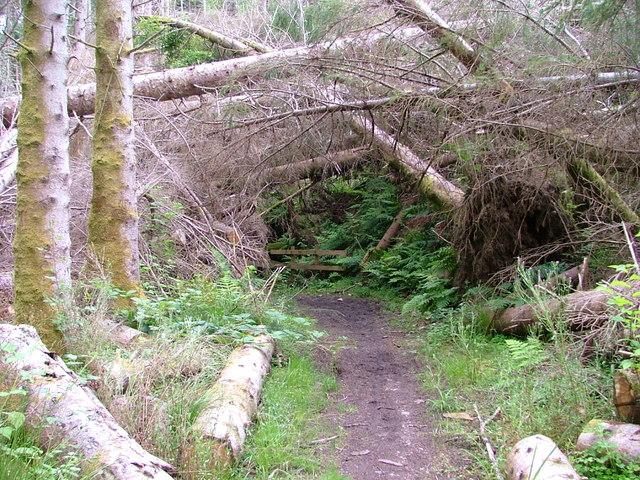 Balmacara Woodland Walk