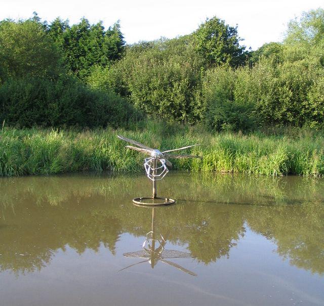 Dragonfly, Hatton locks 18:51