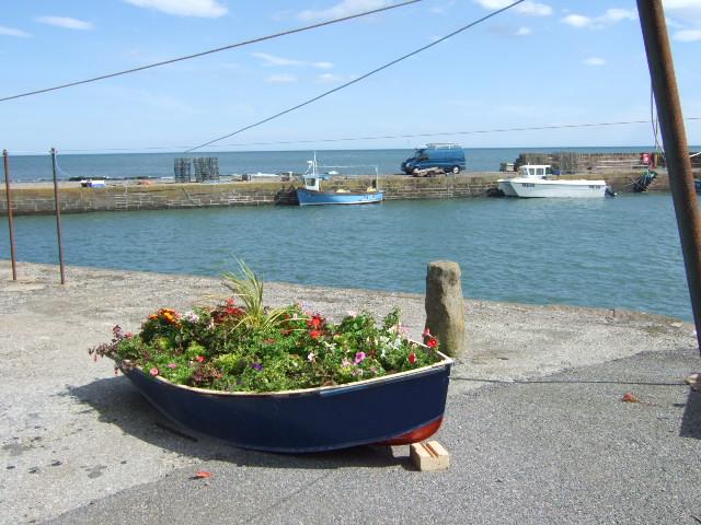 A harbour-front garden