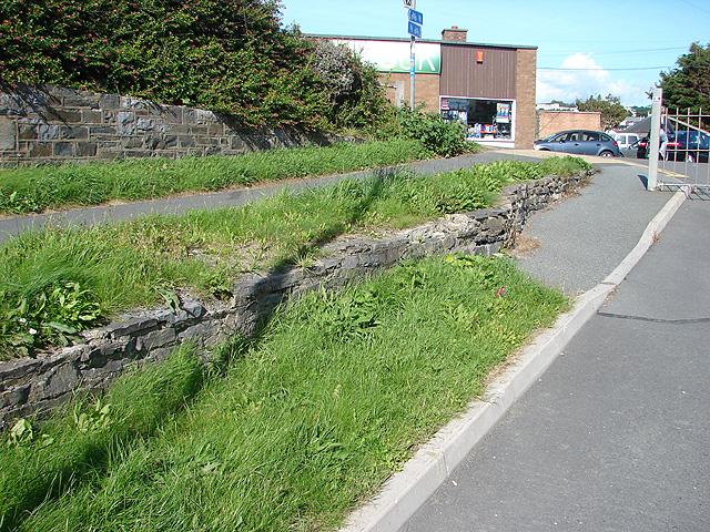 Vale of Rheidol Railway Embankment