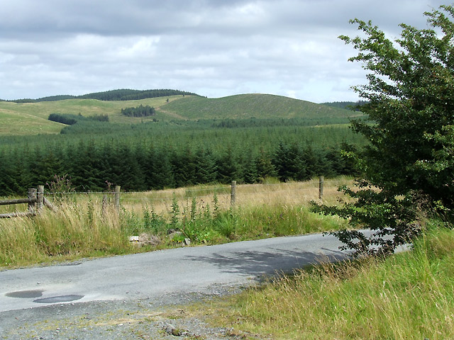 Mountain Road and Forestry, Ceredigion