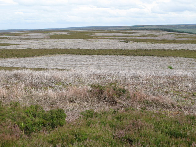Moorland below Round Hill