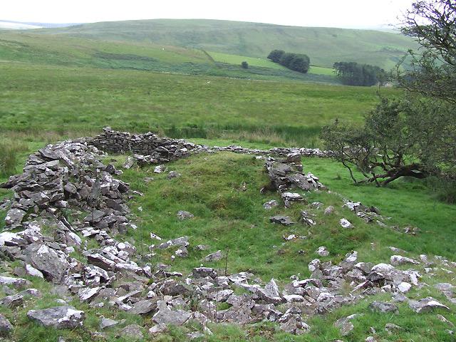Ruined Dwelling, near Nant Cynydd, Ceredigion