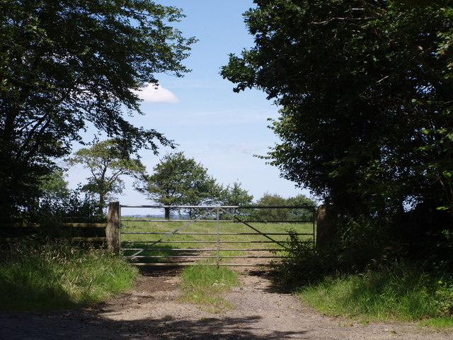 By Westcott Cottage