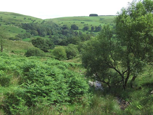 Nant Fawr, Ceredigion and Carmarthenshire