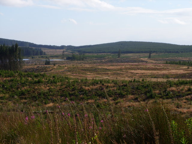 Looking towards Loch Moan